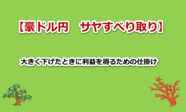【弐陸の陣】大きな下げ相場で大きな利益を得るためのFXオプション仕掛け